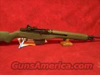 Springfield Armory Loaded M1A with National Match Barrel .308 7.62 NATO Green synthetic stock blue barrel(MA9229)