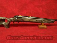 "Browning X-Bolt Eclipse Hunter .300 WSM 24"" (035299246)"