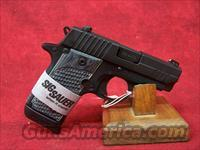 Sig Sauer 238 Extreme .380 auto (238-380-XTM-BLKGRY)