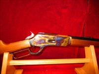 CHAPARRAL MODEL 1876 40-60 WCF