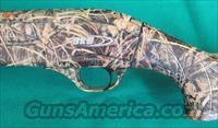 "SKB IS-300 Waterfowl semi-auto 12 ga, 30"", NIB"