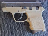 "Smith & Wesson M&P BG380 .380 Auto FDE 2.75"" 10167"