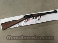 Henry Lever-Action .22 LR Carbine with Large Loop