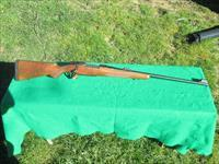 CZ 550 SAFARI MAGNUM 416 RIGBY, 99% PLUS LOOKS UNFIRED.