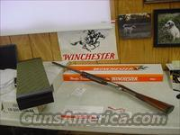 4469 Winchester 101 Quail Special 410 ga ANIC