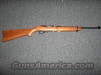 Ruger 10/22 Takedown Wood Stock