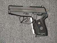 P239 with Crimson Trace laser grips and Night Sights with two 7 round magazines
