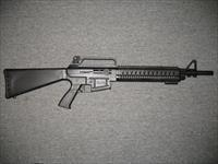 "PW Arms AR-12 20""bbl with removable chokes"