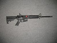 M&P 15 Sport II with forward assist and dust cover