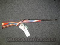 Crickett w/Red, White, & Blue Stock
