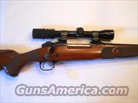 WINCHESTER MODEL 70XTR FEATHERWEIGHT .243 BOLT ACTION RIFLE WITH 2.5X8MM BUSHNELL SCOPE