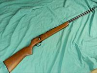 MARLIN MODEL 81 BOLT .22LR