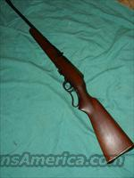 MARLIN MODEL 56 LEVER ACTION .22LR