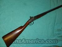 MUZZLELOADER COACH DOUBLE SHOTGUN