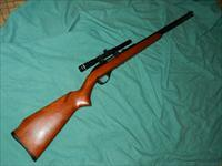 MARLIN/GLENFIELD MODEL 60 AUTO .22