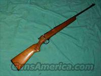 MARLIN/GLENFIELD MODEL 10  BOLT 22