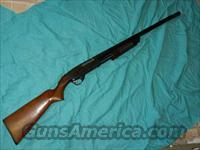 SAVAGE 30F 20 GA. PUMP SHOTGUN