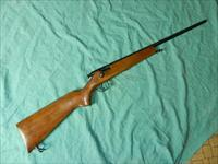 STEVENS/SAVAGE MODEL 15A .22 RIFLE