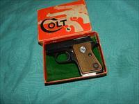 COLT CUB .22 SHORT  AUTO WITH THE BOX!