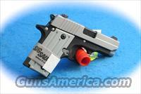 Sig Sauer P238 Two-Tone .380 ACP Pistol **New**