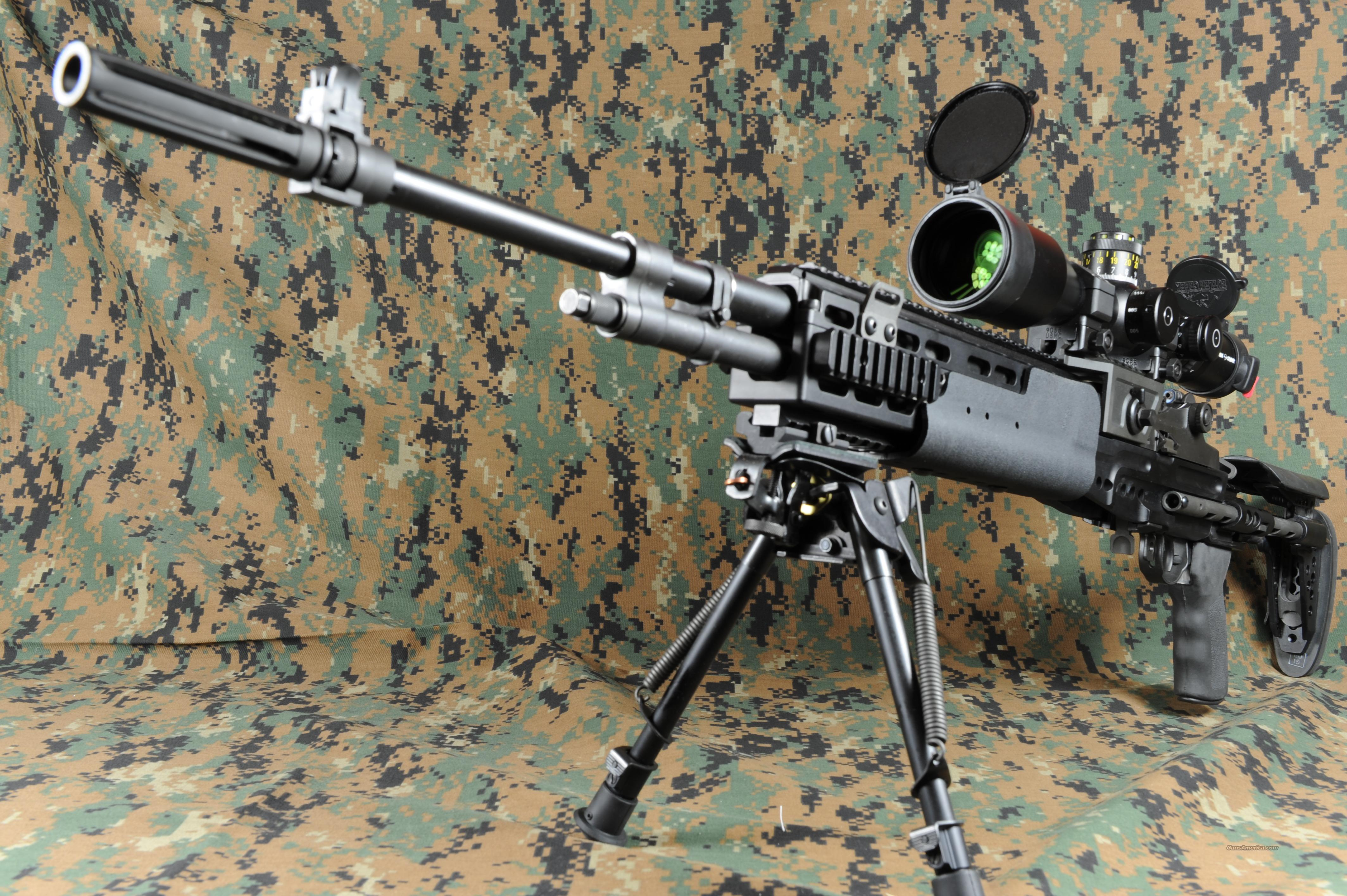 Springfield Armory M39 EMR