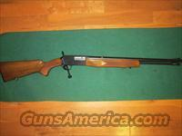 Browning BAR 22