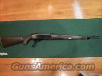 Remington Nylon 66 SG