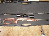 Custom Build Ruger 10/22