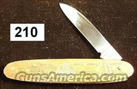 Knife: Parker Japan 1982 World's Fair Knoxville, TN