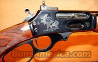 Gary Reeder .450 GNR Big-Dangerous Game Rifle