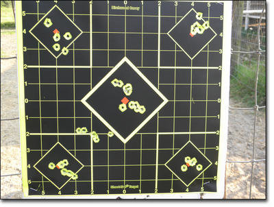 These were typical groups for both guns at 35 yards. There are two groups in the center diamond