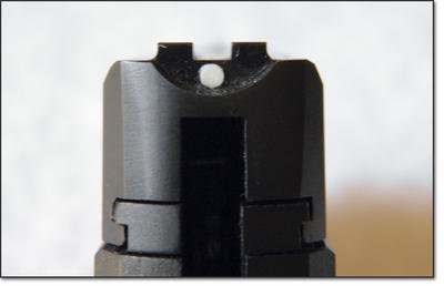 Taurus TCP rear sight