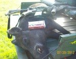 DRT Frangible .223 Ammo vs. Charging Wild Boar