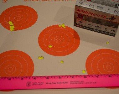 """Winchester 2 ¾"""" 9-pellet 00 buckshot at 10 yards."""