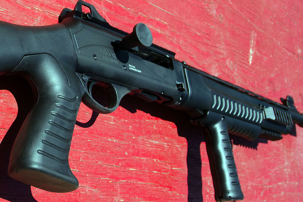 The Escort Gladius 20 Gauge for Home Defense