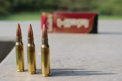 We had good results with a variety of ammo, but our tightest groups were shot with HPR.
