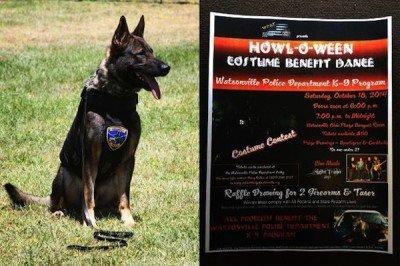 watsonville-police-dog-jpg