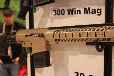 A complete rifle. This one is in 300 Win Mag.