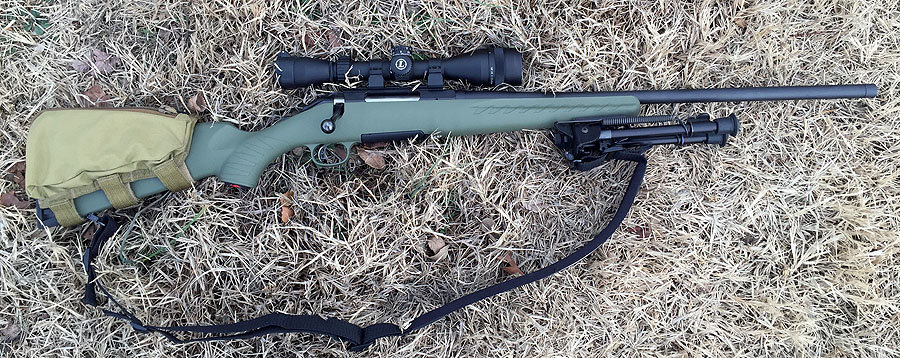 Rifle, scope, and bipod for under $900? Not bad.