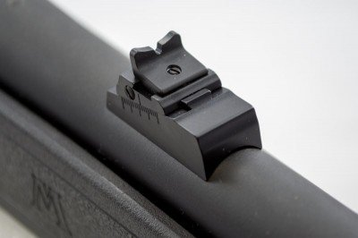 The rear sight is adjustable for windage and elevation, or, like the front sight, you can remove the whole thing.