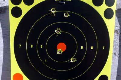 From 100 yards with the Primary Arms Micro Dot.