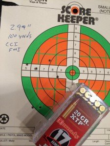 A 6-shot, 3-inch group from 100 yards. Not too shabby!