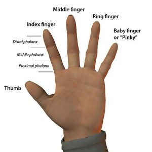 We know how well you know the back of your hand, but how about the front?