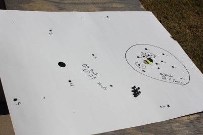 Buckshot from 25 yards.