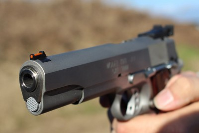 Note the front fiber optic and the rear target sight.