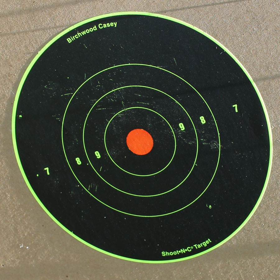 The CCI shotshell from 25 yards. And yes, I was spot on with the accuracy.