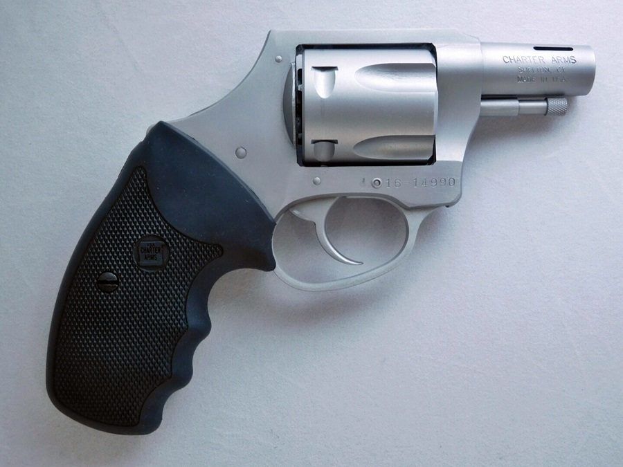 Charter Arms Boomer (14)