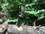 Treeman TASS: A Combat Knife Actually Used by Navy SEALs — Review