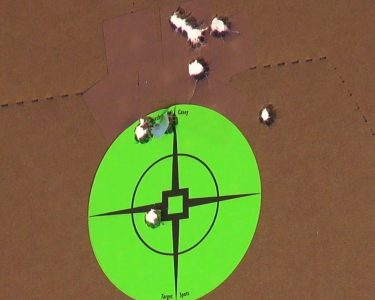 A 10-shot groups at 20 yards with Herter's ammunition.
