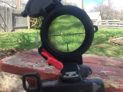 The reticle of the author's Leupold Mark 6 1-6X provides a battery-free targeting solution that is always there for him.